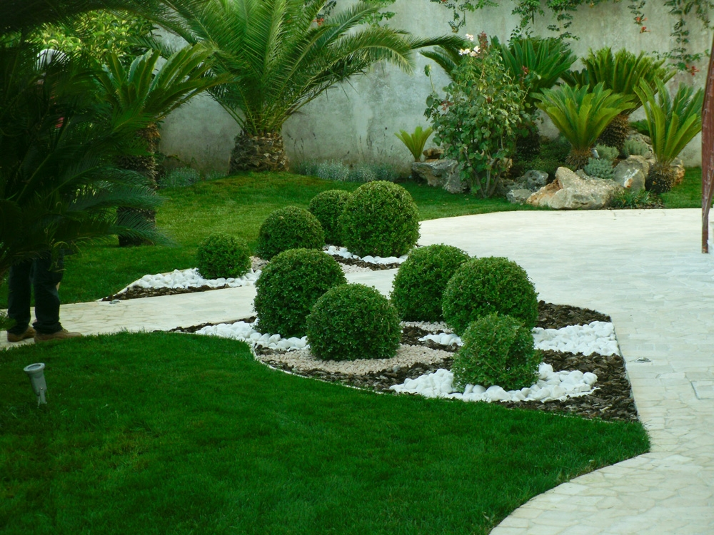 Vivai mello alessandro realizzazioni giardini for Vivai piante